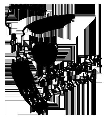 logo miasta Warszawy zakochaj się wWarszawie